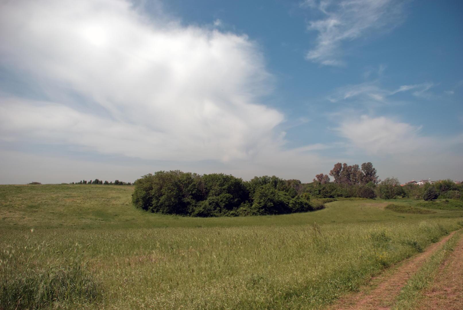 La tenuta di Tor Marancia.