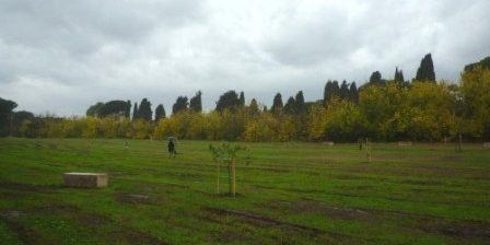 Arboretum dell'Appia Antica
