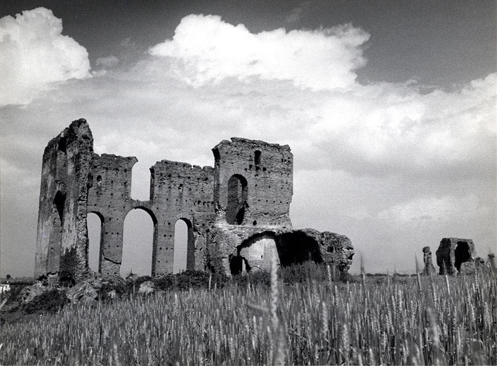 Spighe di grano trai ruderi della Villa dei Quintili, prima degli scavi e dei restauri
